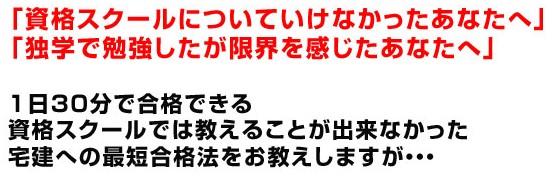 2010y01m09d_155913843.jpg